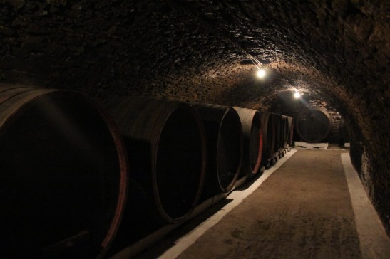 pastrarea vinului