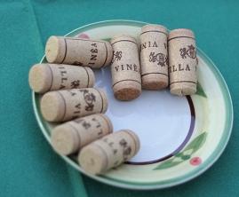 degustare Villa Vinea