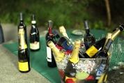 degustare vinuri italiene