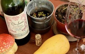 vin in natura