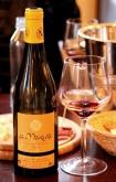 degustare vin natural