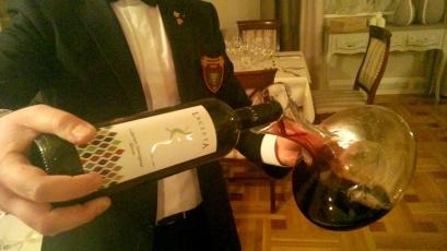 Lacerta vin