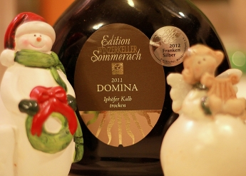Domina Sommerach