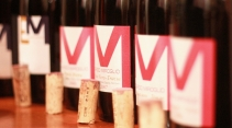 Pinot Noir Edoardo Miroglio