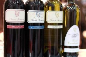 noutati vinuri de la cram SERVE