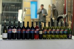 vinurile Prince Stirbey si Crama Bauer