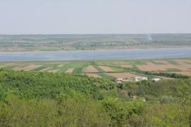 dealuri cu vii pe malul Oltului