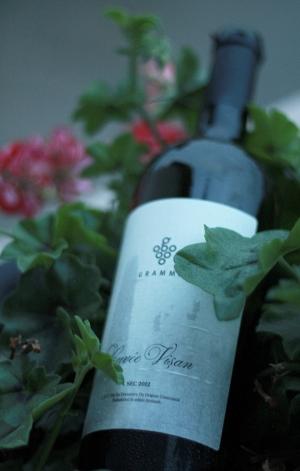 sticla de vin in ghiveci de flori