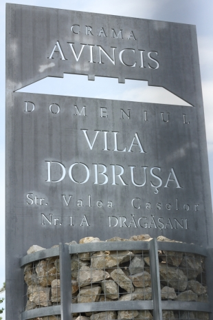 poarta Avincis