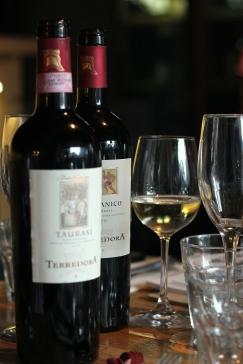 Terradora vin italian