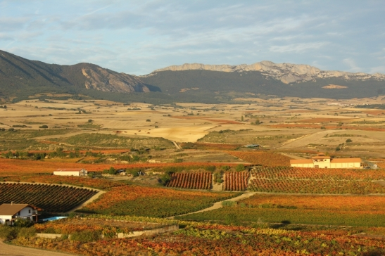 view of Rioja