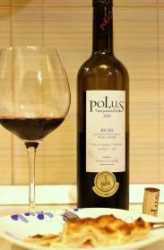 Polus 2011