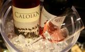 Caloian Roze 2013