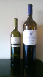 vinuri Terra Romana
