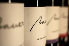 vinuri Bauer