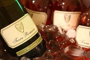 Roze si Chardonnay Terra Romana