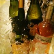 vinuri Colocviu