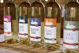 etichete vinuri