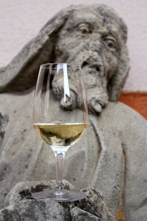 meditatie asupra vinului