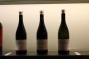 Bauer new wines