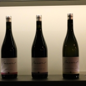 Bauer new wines