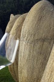 sculptura in fan