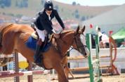 Cupa Napoca Horse