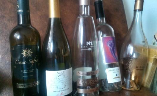 picnic cu vinuri
