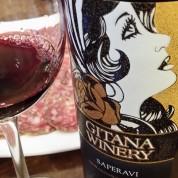 Gitana Winery Moldova