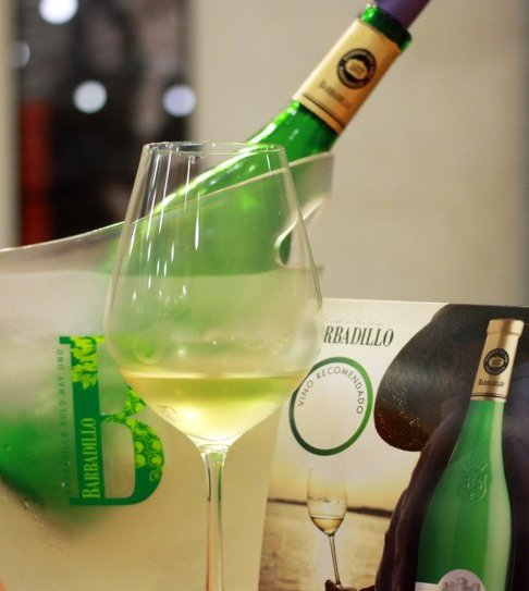 degustare vin spaniol