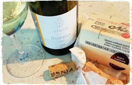 Chardonnay Sophia 2013