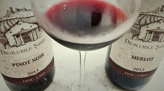Merlot si Pinot Noir 2013 Minis