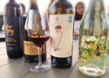 selectie de vinuri la degustare
