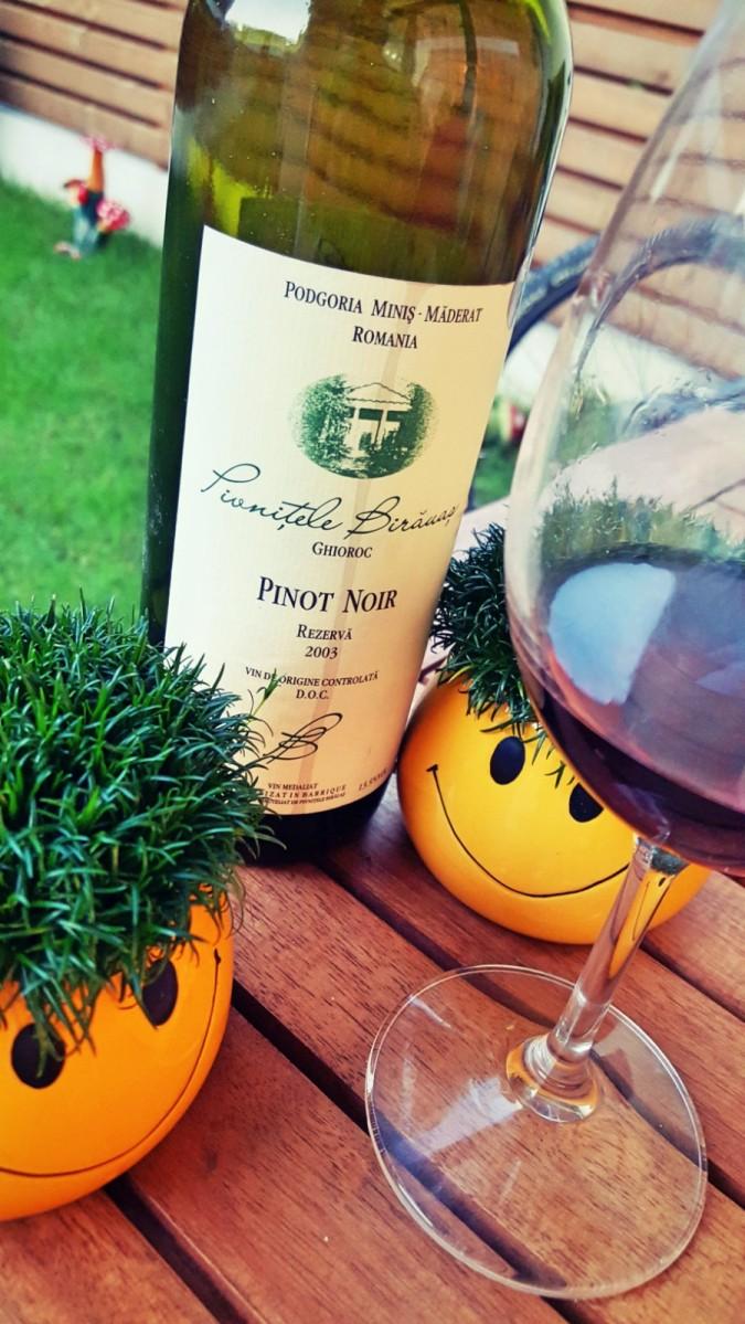 Pinot Noir 2003, Pivnitele Birauas